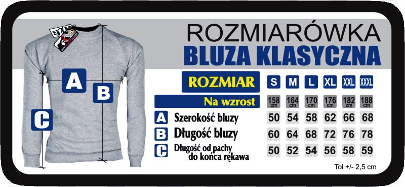 Rozmiarówka bluzy reglan klasycZne bez kaptura wyprodukowane w polsce